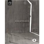 Livro - Cicatrizes