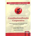Livro - Constitucionalização Corporativa