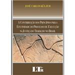 Livro - Contribuição dos Princípios para a Efetividade do Processo de Execução na Justiça do Trabalho no Brasil, a