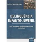 Livro - Delinquência Infanto-Juvenil: uma Abordagem Desenvolvimentista em Criminologia