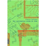 Livro - Dez Centímetros Acima do Chão