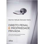 Livro - Direito Penal e Propriedade Privada