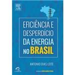 Livro - Eficiência e Desperdício da Energia no Brasil