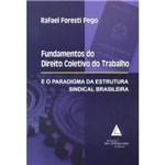 Livro - Fundamentos do Direito Coletivo do Trabalho - e o Paradigma da Estrutura Sindical Brasileira