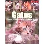 Livro - Gatos