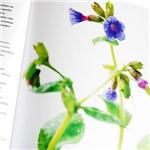 Livro - Guia de Saúde Natural