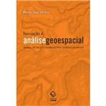 Livro - Iniciação à Análise Geoespacial: Teoria, Técnicas e Exemplos para Geoprocessamento
