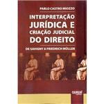 Livro - Interpretação Jurídica e Criação Judicial do Direito: de Savigny a Friedrich Müller