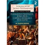 Livro - Introdução ao Novo Testamento: História, Literatura e Teologia
