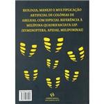 Livro - Mandaçaia, a