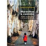 Livro - Maravilhas a Caminho: Acolher um Deficiente, Viver Nossas Deficiências