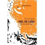 Livro - Mel de Leão - o Mito de Sansão