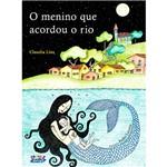 Livro - Menino que Acordou o Rio, o