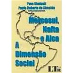 Livro - Mercosul, Nafta e Alca: a Dimensão Social
