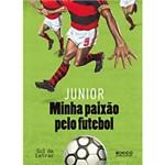 Livro - Minha Paixão Pelo Futebol - Coleção Gol de Letras