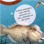 Livro - Mundo Submarino, o