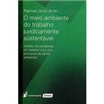 Livro - o Meio Ambiente do Trabalho Juridicamente Sustentável: Análise dos Acidentes do Trabalho à Luz dos Princípios de Direito Ambiental