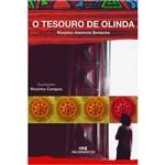 Livro - o Tesouro de Olinda