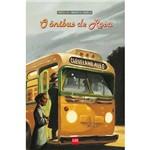 Livro - Ônibus de Rosa, o