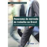 Livro - Panorama do Mercado de Trabalho no Brasil