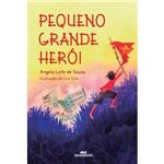 Livro - Pequeno Grande Herói