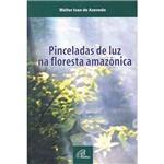 Livro - Pinceladas de Luz na Floresta Amazônica