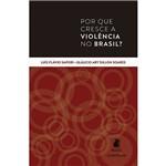Livro - por que Cresce a Violência no Brasil?
