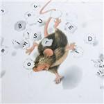 Livro - Ratinho e o Alfabeto, o - Série Ratinho