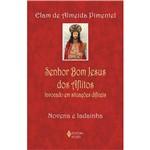 Livro - Senhor Bom Jesus dos Aflitos Invocado em Situações Difíceis - Novena e Ladainha - Livro de Bolso