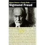 Livro - Sigmund Freud: Sua Imagem do Ser Humano