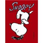 Livro - Snoopy Extraordinário