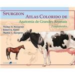 Livro - Spurgeon / Atlas Colorido de Anatomia