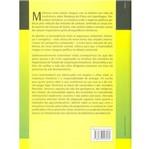 Livro - Subdesenvolvimento Sustentável