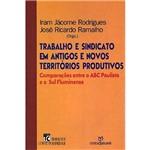 Livro - Trabalho e Sindicato em Antigos e Novos Territórios Produtivos