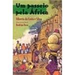Livro - um Passeio Pela África