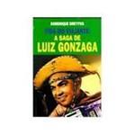 Livro - Vida do Viajante - a Saga de Luiz Gonzaga