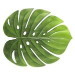 Lugar Americano Verde 48x38cm Garden Leaf 6892 Lyor
