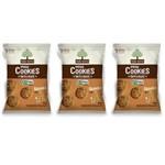 Mãe Terra Biscoito Orgânico Granola e Mel 25g (kit C/03)
