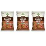 Mãe Terra Biscoito Orgânico Maçã e Canela Diet 25g (kit C/03)