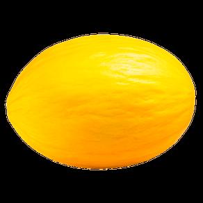 Melão Amarelo Tradicional (1 Unidade Aprox. 3kg)