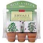 Mini Estufa Ervas Terra/verde