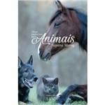Oleos Essenciais para Animais / Morag