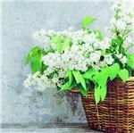 Pacote de Guardanapos Descartaveis Flores Lilas