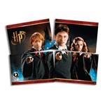Painel 4 Lâminas Harry Potter