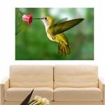 Painel Adesivo de Parede - Beija-Flor - N3126