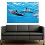 Painel Adesivo de Parede - Golfinhos - N2061