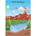 Painel Alfabetização Educativo Ciclo da Água