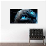 Painel Fotográfico Adesivo - Gato de Olho Azul