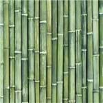 Papel de Parede Adesivo Bambu Verde Mar BB19021