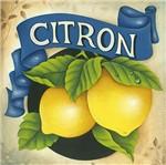 Papel Decoupage Arte Francesa Litoarte AFQ-382 21x21cm Limão Siciliano